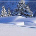 Вывоз снега в Красноярске